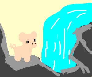 pig by rock wall looking at waterfall