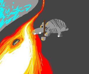 Hippo digging into Lava