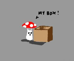 Mushroom claims box as His