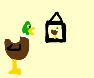 Duck with a picture of a duck
