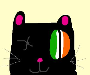 Black cat with one big orange and green eye
