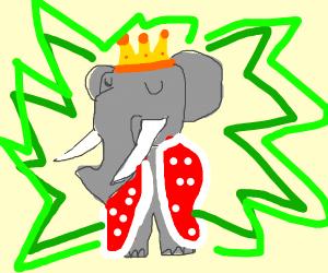 King Pachyderm