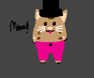 Cat in pants and a tophat