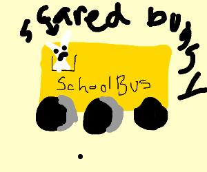 Scared bunny in schoolbus