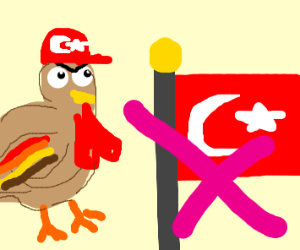 A Turkish turkey that hates Turkey