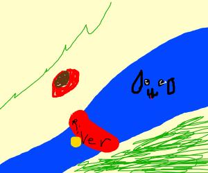 Pet River