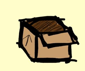 Cardbox fortress