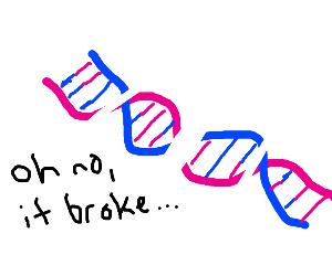 Broken DNA