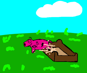 a pig with tattoos escapes sandbox