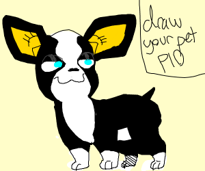 draw your pet PIO (i have 3 dogs)