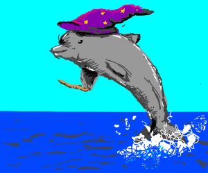 Wizard Dolphin