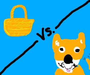 Basket vs. Dog