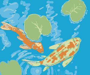 koi fish under lilypads