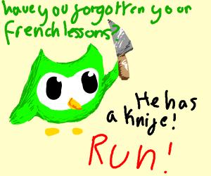 Duolingo owl has a knife! RUN! AAAHH-