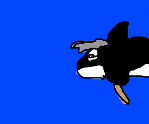 Old Orca
