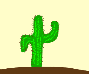 New vegas cactus