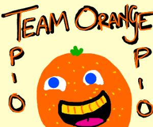 [PIO] Team orange