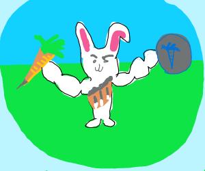 warrior rabbit