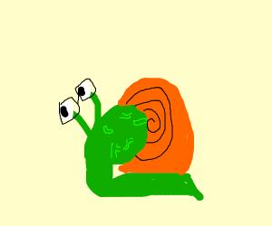 Brain snail