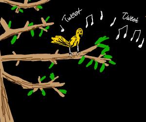 smol yellow bird singing on a branch