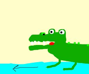 Crocodile crossing a River