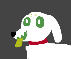 GHOST DOG!