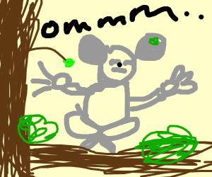 Meditating Koala