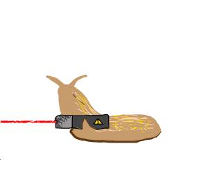 slug with a laser