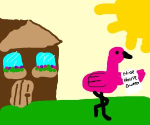 a flamingo owns a nice house