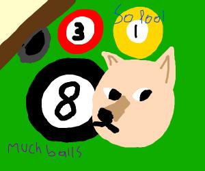 Doge in a ball pool