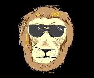 cool lion B)