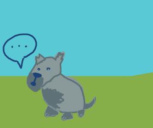 Speechless doggo