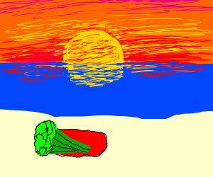 Celery on a Beach
