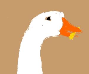 Ducks like McDonald's fries