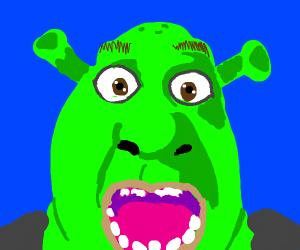 Shocked Shrek