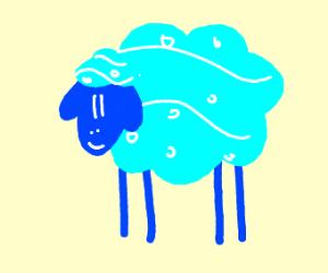 Happy Water Sheep
