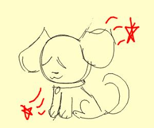 Pet Doggy