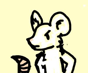 mad white rat
