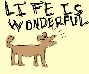 Dog barks life is wonderful