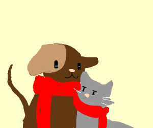 dog & cat love