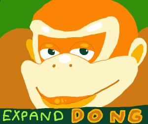 Donkey Kong e x p a n d d o n g