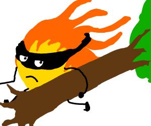 Fire steals a tree.