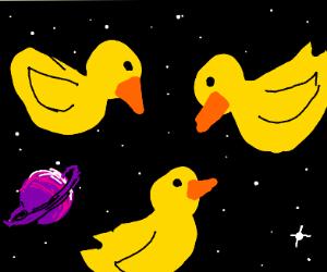 Ducks in space