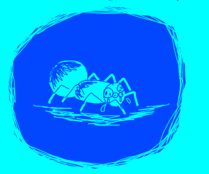 A sad, blue spider