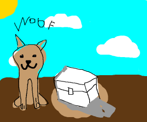 Dog founds a white chest