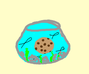 A cookie in a fish tank