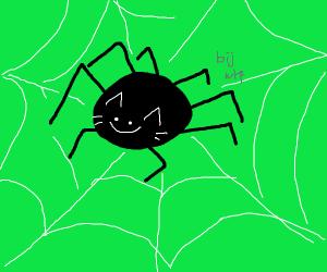 Horrifying cat-spider