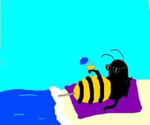 Hornet Vacationing