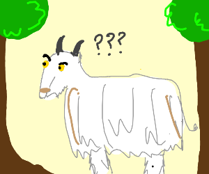 Confused mountain goat