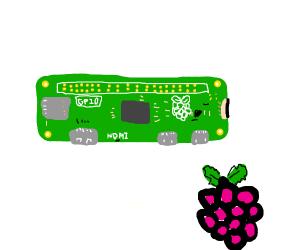 Raspberry michrochip?